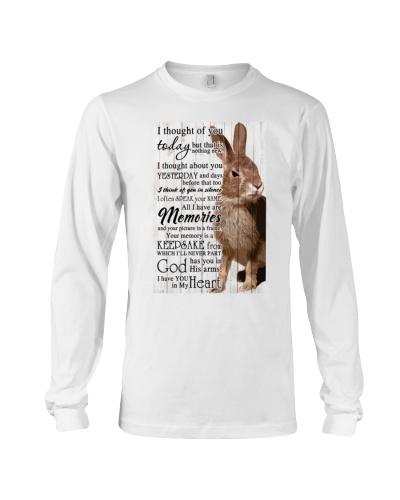 Rabbit Memories