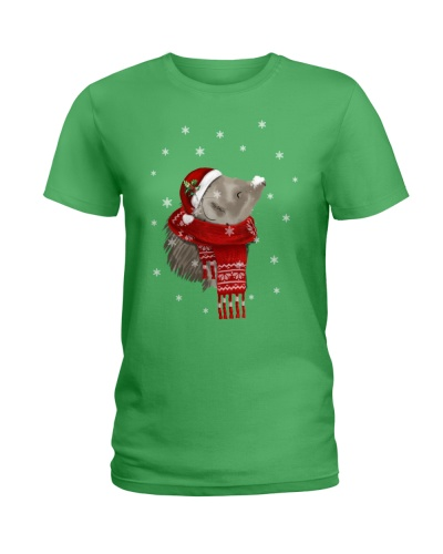 Hedgehog Christmas Gift