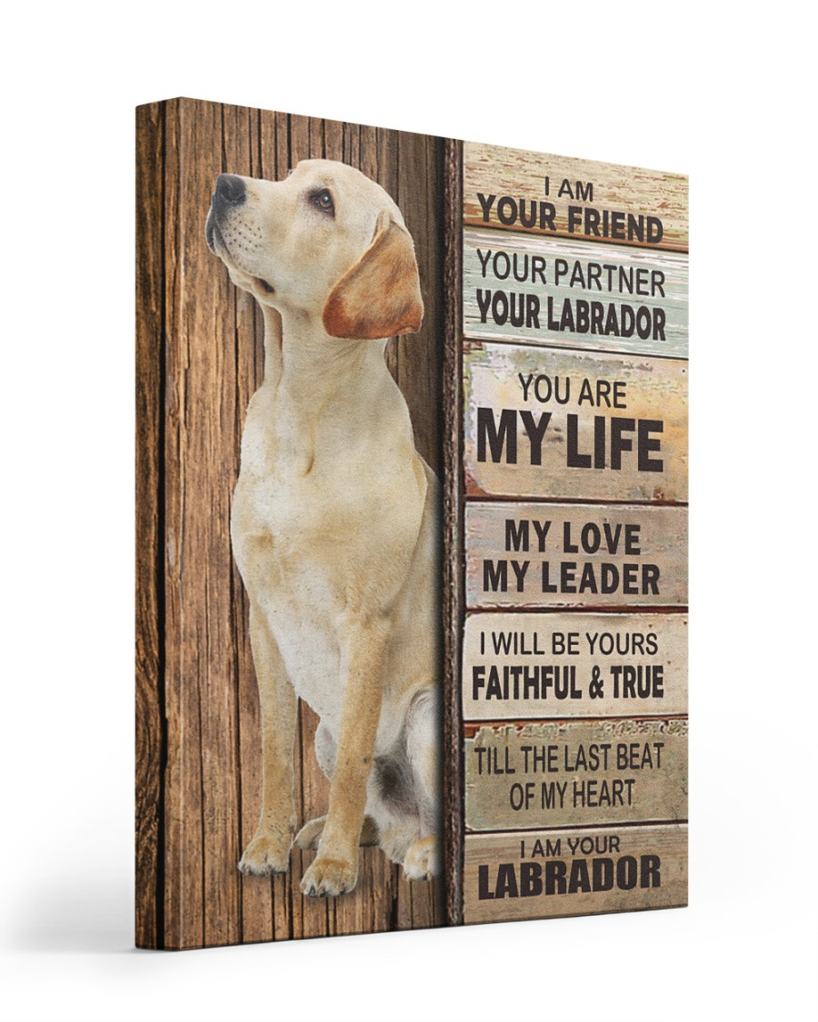 Labrador Partner 16x20 Gallery Wrapped Canvas Prints
