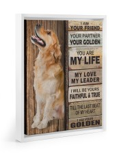 Golden Retriever Partner Floating Framed Canvas Prints White tile