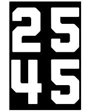25 45 - 25th Amendment T-shirt 24x36 Poster thumbnail