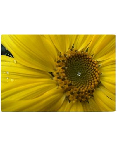 Dewy Sunflower