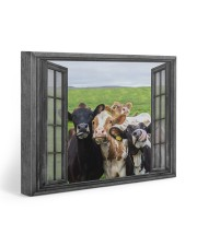 Cows 20x16 Gallery Wrapped Canvas Prints front