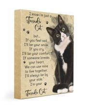 I know i'm just a Tuxedo Cat 11x14 Gallery Wrapped Canvas Prints front