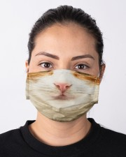 Domestic Shorthair Cloth face mask aos-face-mask-lifestyle-01