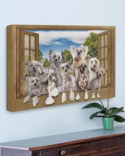 Chinese crested 30x20 Gallery Wrapped Canvas Prints aos-canvas-pgw-30x20-lifestyle-front-01