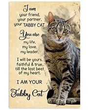 Tabby cat 11x17 Poster front