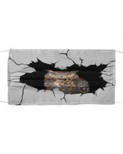 Owl Crack Cloth face mask front