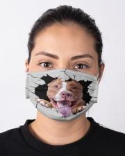 Pitbull Crack Cloth face mask aos-face-mask-lifestyle-01