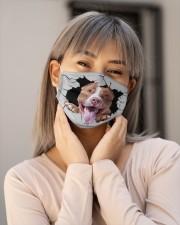 Pitbull Crack Cloth face mask aos-face-mask-lifestyle-17