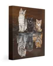 3 Cats 11x14 Gallery Wrapped Canvas Prints front