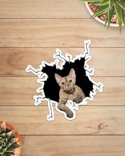 Devon Rex Sticker - Single (Vertical) aos-sticker-single-vertical-lifestyle-front-07