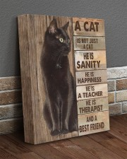 A cat is not just a cat 11x14 Gallery Wrapped Canvas Prints aos-canvas-pgw-11x14-lifestyle-front-10
