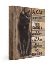 A cat is not just a cat 11x14 Gallery Wrapped Canvas Prints front
