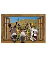 Donkey 36x24 Poster front