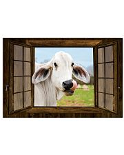 Cow 17x11 Poster front