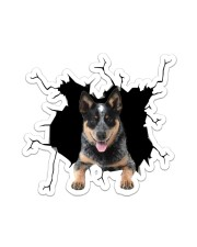 Australian Cattle Dog Sticker - Single (Vertical) front