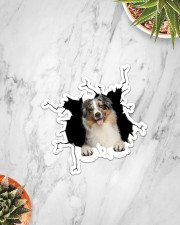 Australian Shepherd Crack Sticker - Single (Vertical) aos-sticker-single-vertical-lifestyle-front-06