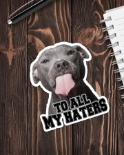 To All My Haters Sticker - Single (Vertical) aos-sticker-single-vertical-lifestyle-front-05