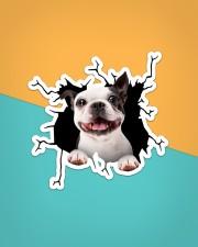 Boston Terriers Crack Sticker - Single (Vertical) aos-sticker-single-vertical-lifestyle-front-02