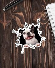 Boston Terriers Crack Sticker - Single (Vertical) aos-sticker-single-vertical-lifestyle-front-05