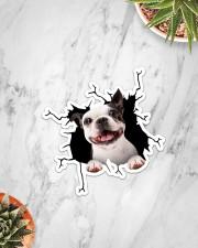 Boston Terriers Crack Sticker - Single (Vertical) aos-sticker-single-vertical-lifestyle-front-06