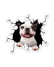Boston Terriers Crack Sticker - Single (Vertical) front