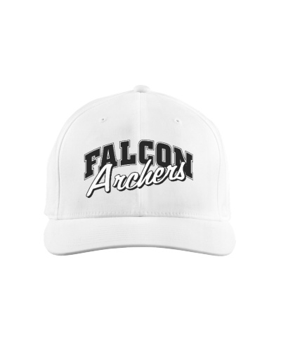 Falcon hat old logo