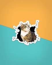 Cat-Crack Sticker - Single (Horizontal) aos-sticker-single-horizontal-lifestyle-front-02