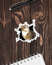 Cat-Crack Sticker - Single (Horizontal) aos-sticker-single-horizontal-lifestyle-front-05