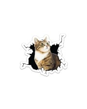 Cat-Crack Sticker - Single (Horizontal) front