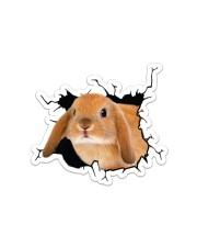 Bunny Crack Sticker - Single (Horizontal) front