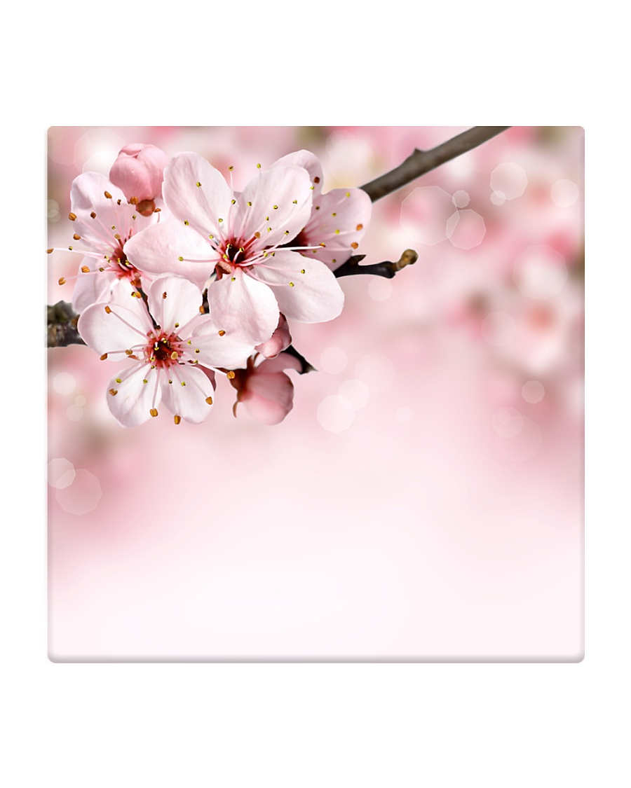 Cherry Bloom Home living Square Coaster