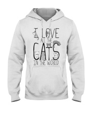 I Love All The Cats Hooded Sweatshirt thumbnail