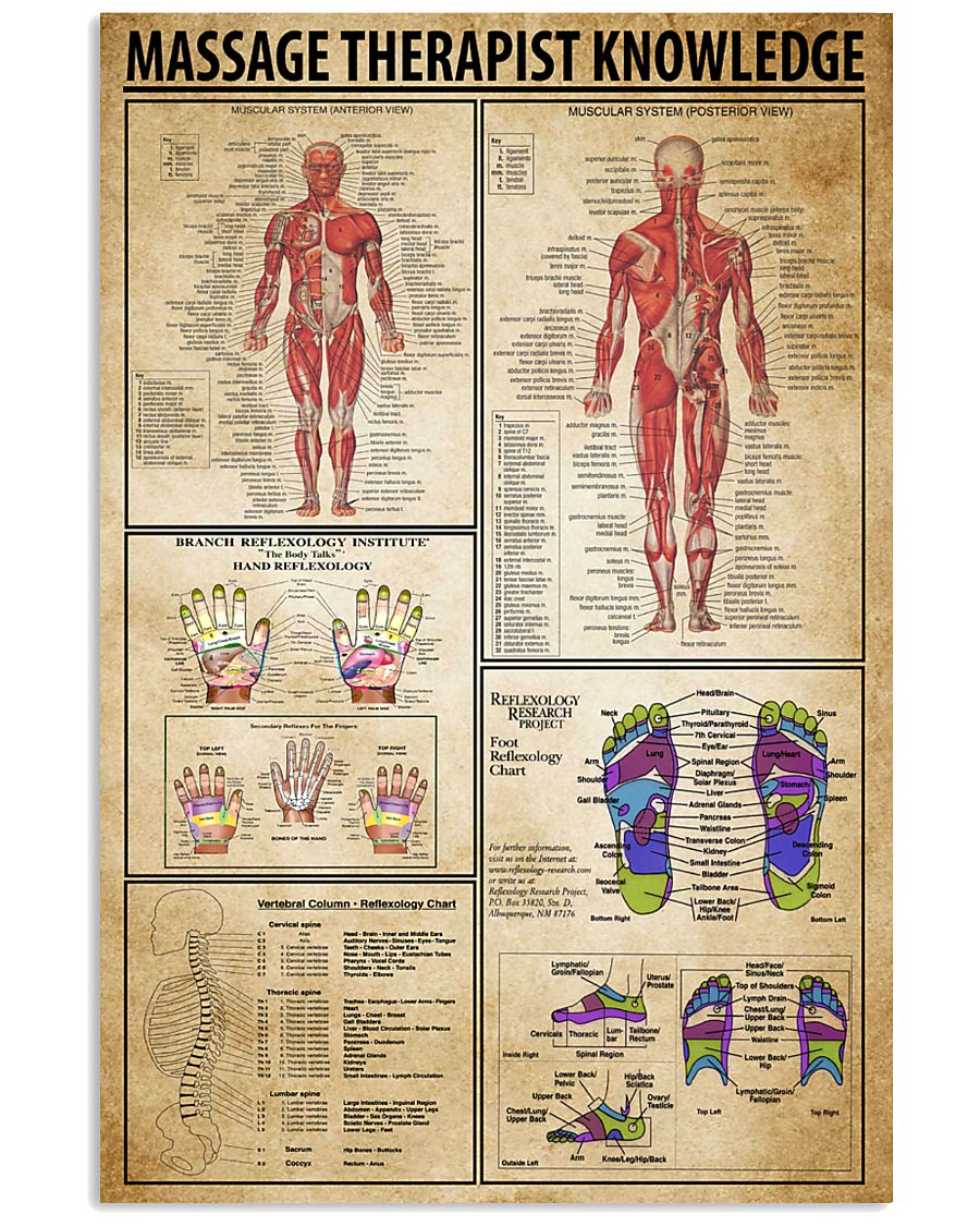 Massage Therapist Knowledge 11x17 Poster