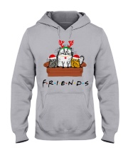 Friends Hooded Sweatshirt thumbnail
