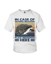 Place Hedgehog Here Youth T-Shirt thumbnail
