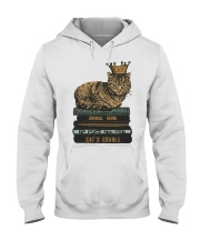 Cat's Lady Hooded Sweatshirt tile
