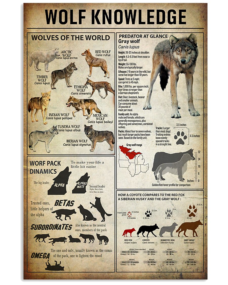 Wolf Knowledge 11x17 Poster