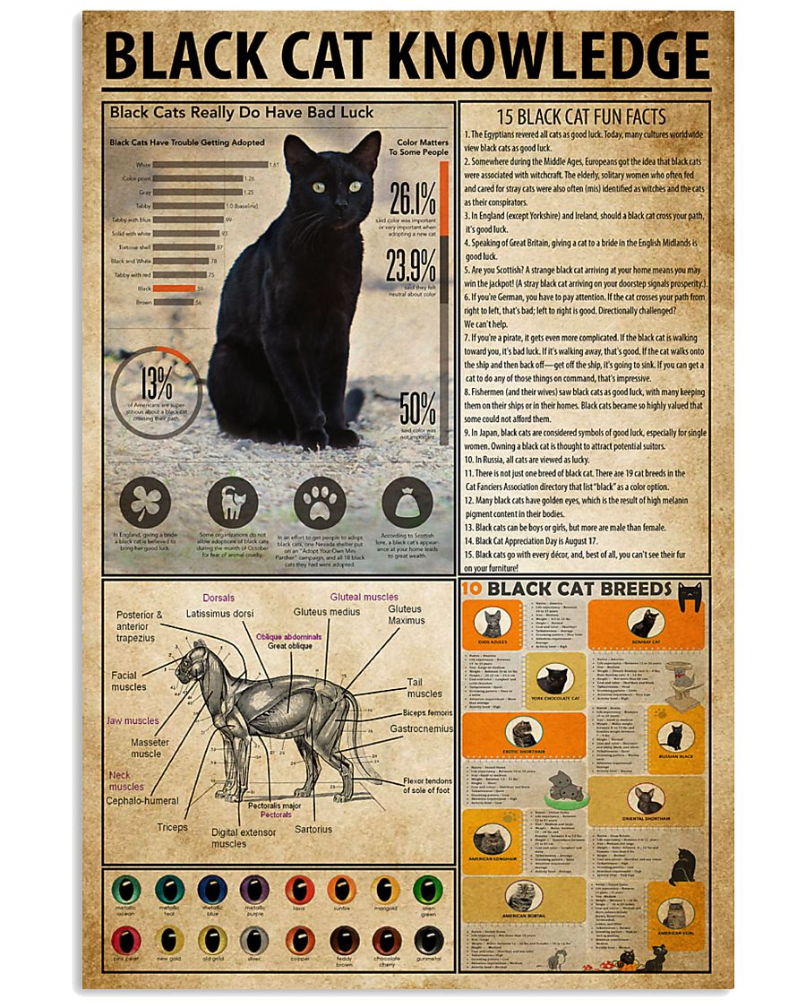 Black Cat Knowledge 11x17 Poster