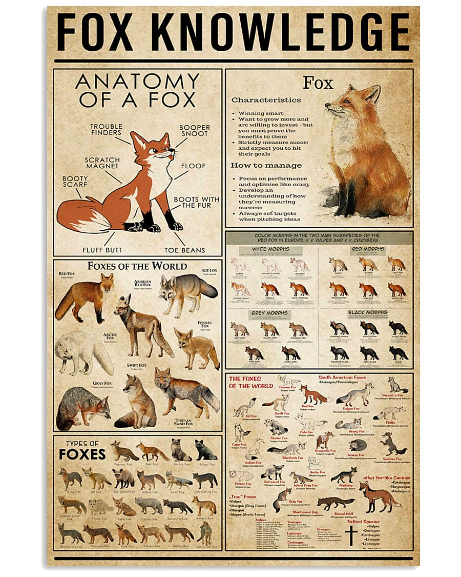 Fox Knowledge 11x17 Poster
