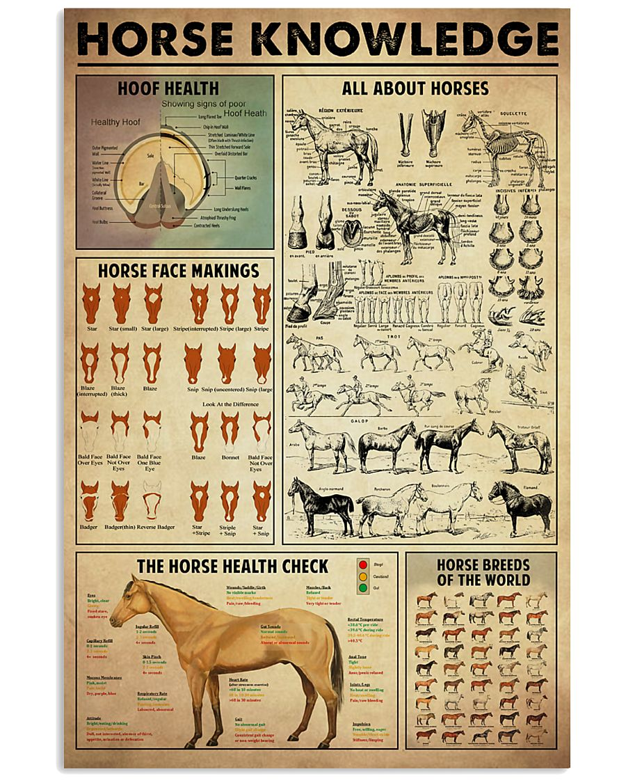 Horse Knowledge 11x17 Poster