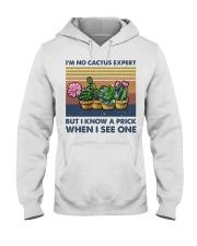 I'm No Cactus Expert Hooded Sweatshirt thumbnail