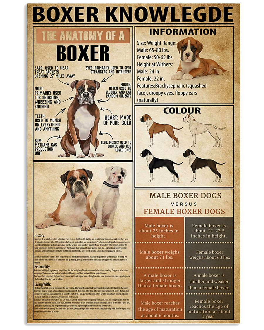 Boxer Knowledge 11x17 Poster
