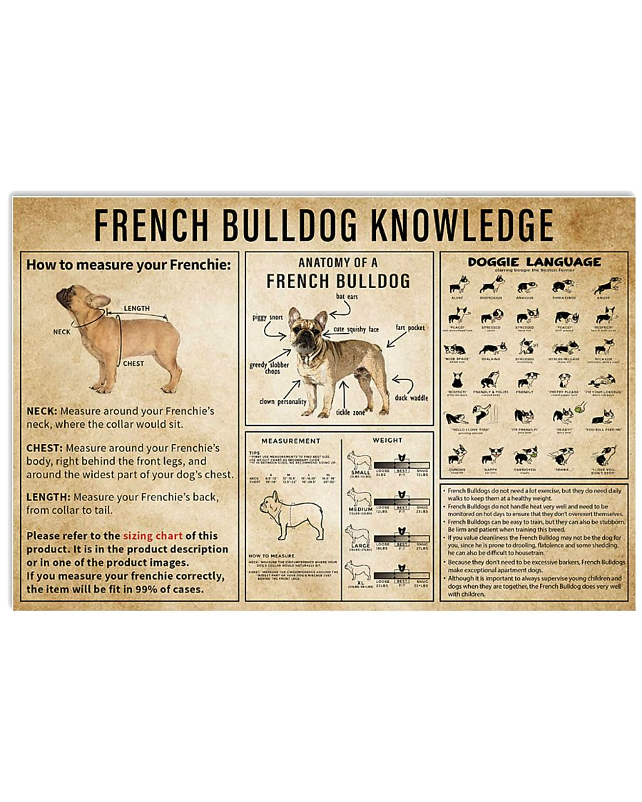 French BullDog Knowledge 17x11 Poster