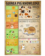 Guinea Pig Knowledge 11x17 Poster front