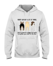 Money Can Buy A Lot Of Things Hooded Sweatshirt thumbnail