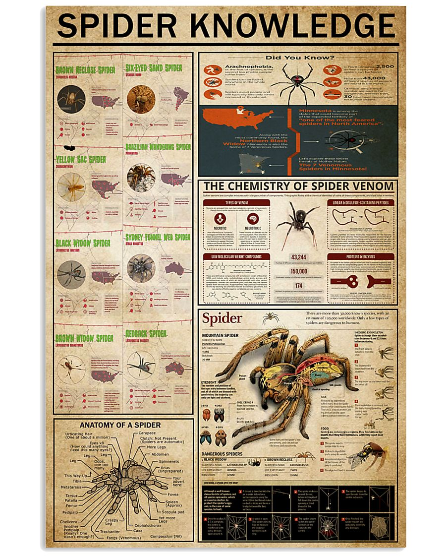 Spider Knowledge 11x17 Poster