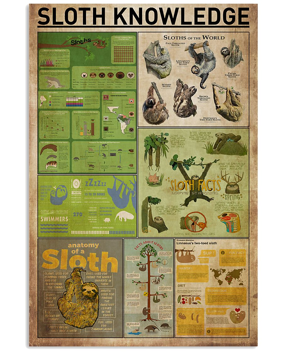 Sloth Knowledge 11x17 Poster