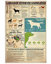 Labrador Retriever Knowledge 11x17 Poster front